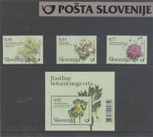 Rastlinstvo VII – rastline Botaničnega vrta