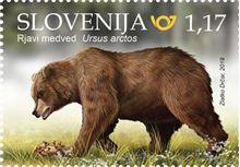 Živalstvo - Rjavi medved